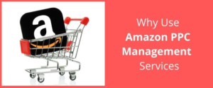 Why Using Amazon PPC Services is the Right Move?