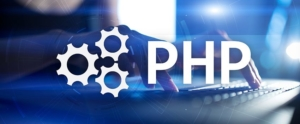 Leverage Our PHP Website Development Services for Unsurpassable Success!
